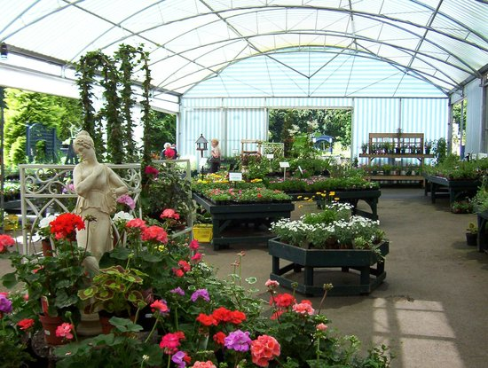 Scotland Nurseries Garden Centre Gift Shop