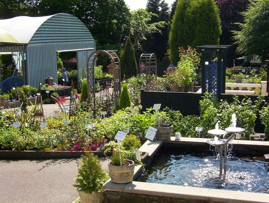 Tansley, UK: Garden Centre
