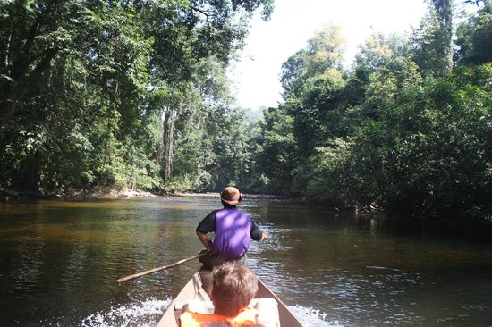 Taman Negara National Park: Boat riding
