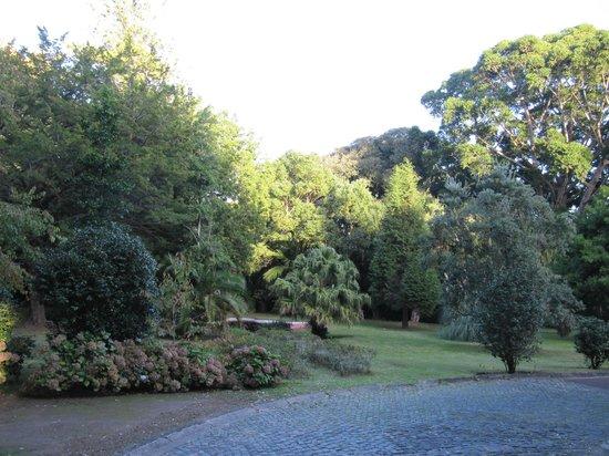 Jardim Jose do Canto: парк