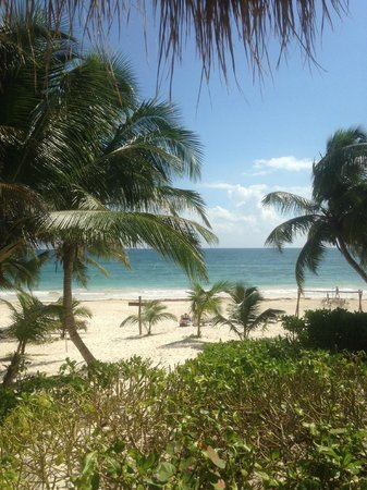 Cabanas Tulum : View from the room