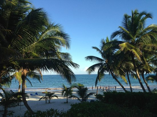 Cabanas Tulum : View from the front porch