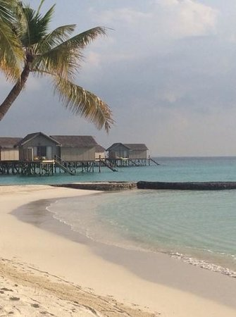Centara Ras Fushi Resort & Spa Maldives : watervilla