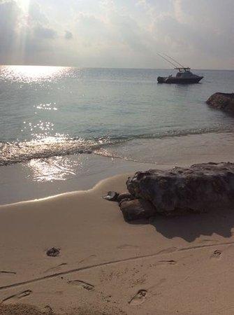 Centara Ras Fushi Resort & Spa Maldives : tramonti