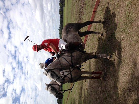 Argentina Polo Day: Great polo!!!