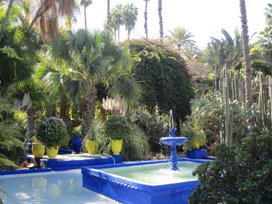 Jardin majorelle picture of jardin majorelle marrakech for Jardin majorelle