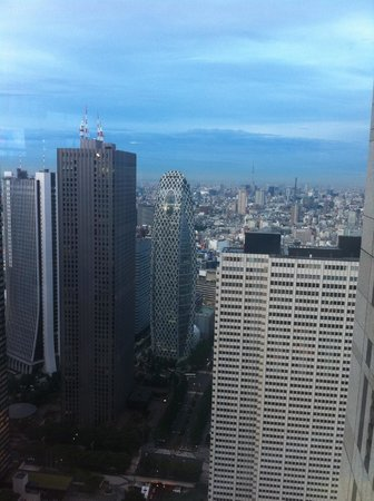 Tokyo Metropolitan Government Buildings: View from the observatory floor