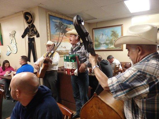 Zacatecas: musicians