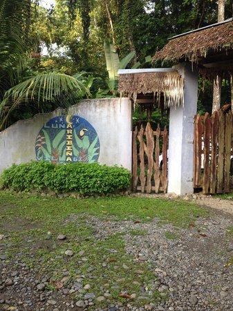 Luna Caribena Village: Luna Caribena...