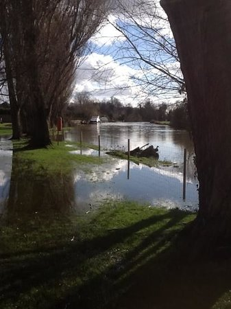 Oxford Thames Four Pillars: flooding nearby on the Thames