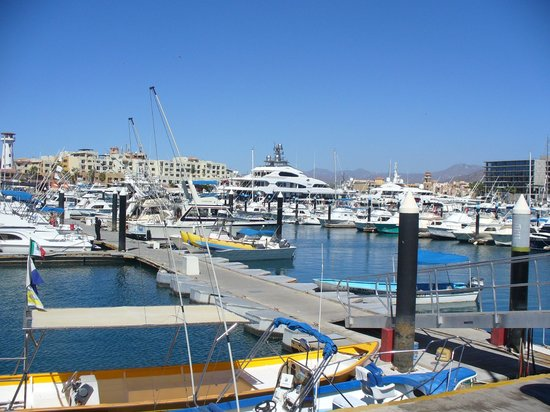 Holiday Inn Resort Los Cabos All-Inclusive : View of the Los Cabos Marina