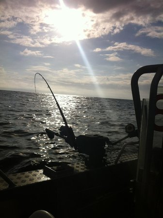 The Lodge at Englefield Bay (Westcoast Resorts): Last bit of sun