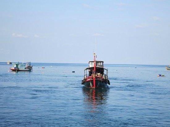 Rainbow Fish Divers: Tauchboot