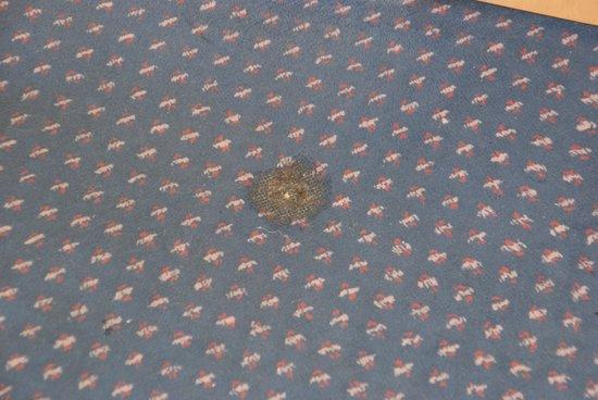 Hotel Regence : Les tâches du tapis plain de la chambre 304