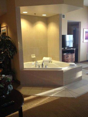 Homewood Suites by Hilton Toronto - Mississauga : Jacuzzi bath tub