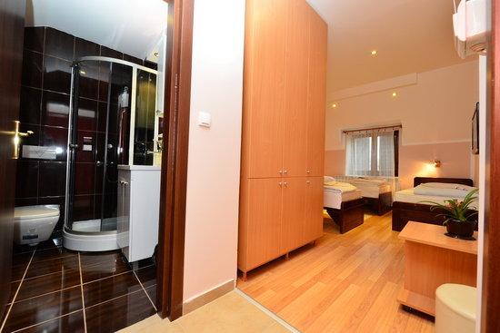 Apartments & Accommodation Novi Sad Stojic : Studio Novi Sad Stojic - for three persons - Stojic