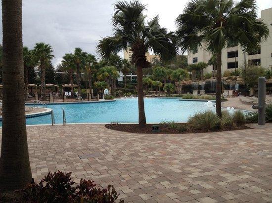 Hyatt Regency Orlando : Grotto Pool