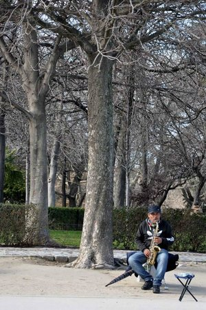 Parque del Retiro: Saxofonista