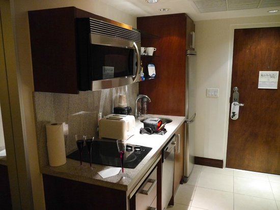 Congress Hotel South Beach : Kitchen facilities
