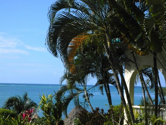Turquoise Bay Dive & Beach Resort: Lush Landscaped Gardens