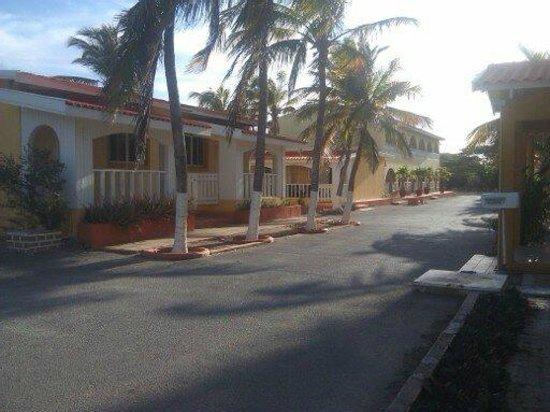 Coconut Inn: area frente a la recepción