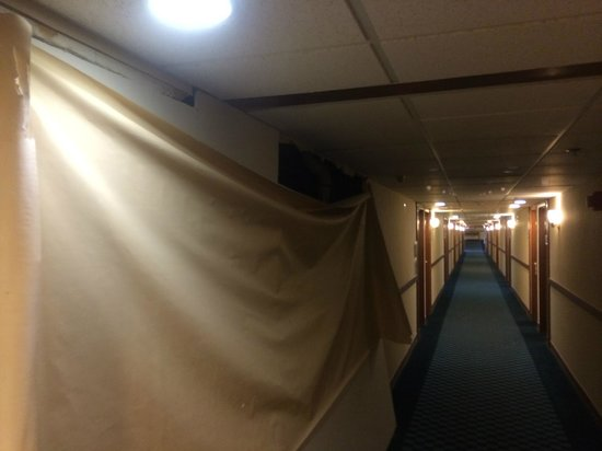 Days Hotel Allentown Airport / Lehigh Valley: Damp smell. Ripped walls in the hallways.