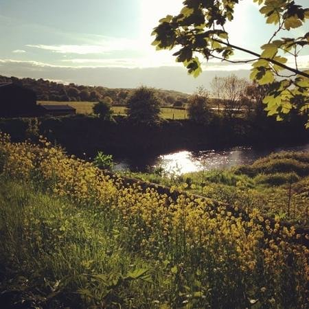 Bridge Farm Hotel: so close to the city yet a country escape of peace and quiet for a perfect break