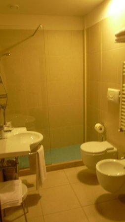Quality Hotel Delfino Venezia Mestre: douche italiene