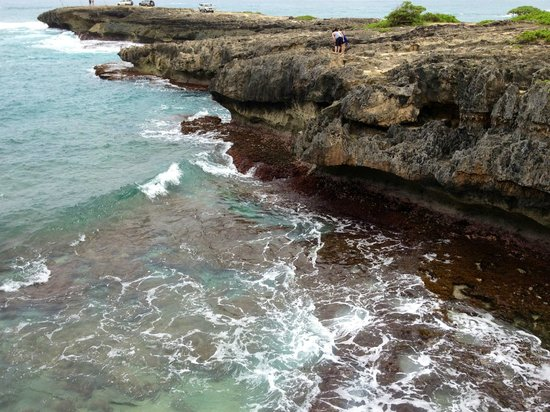 Nau Wale No Tours of Oahu : Cliffs at Laie Point