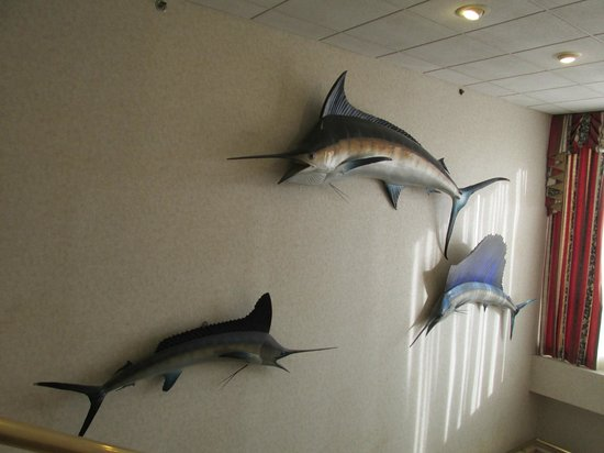Clarion Resort Fontainebleau Hotel - Oceanfront : Marlin in a hallway