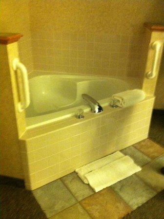 BEST WESTERN PLUS Executive Court Inn & Conference Center: jacuzzi in bedroom