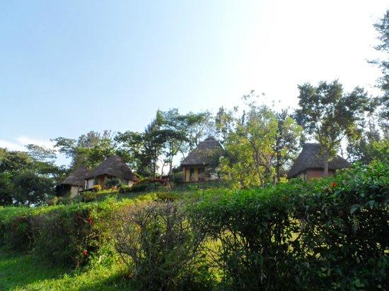 Kitojo Tourist Home: The cabanas