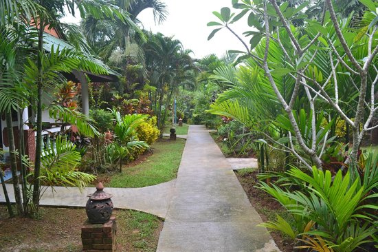 Vipa Tropical Resort: the walkway to rooms