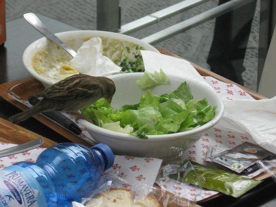 Caffetteria Tavola calda Letizia: dopo di noi...............meravigliosa natura !   Ottimo pranzo veloce