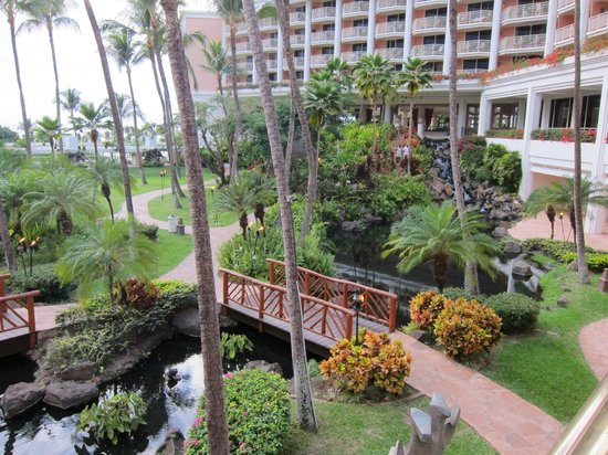 Grand Wailea - A Waldorf Astoria Resort: hotel central garden, view from room.