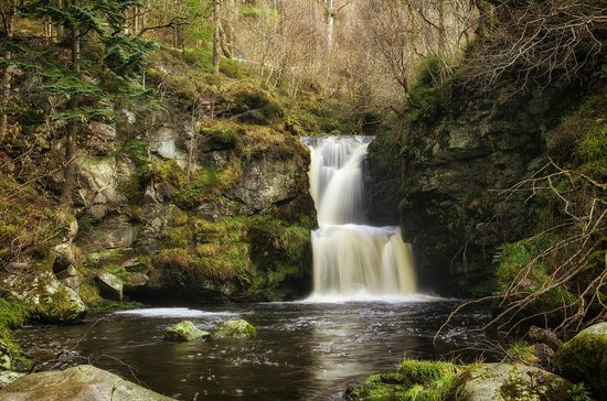 The Linn Falls: Linn of Ruthrie Falls - Feb 14, 2014