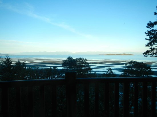 Tigh-Na-Mara Resort: View!