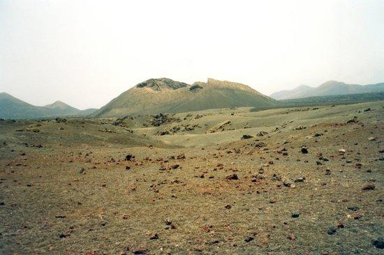 Volcán del Cuervo: cuervo