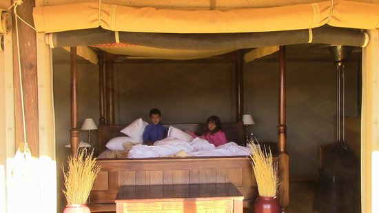 Wolwedans Dunes Lodge: il letto nel nulla