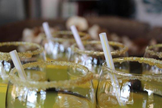 Chobe Bakwena Lodge: Welcome drinks