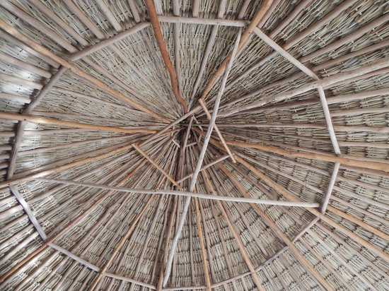 Community Tours Sian Ka'an : ceiling of roof were we ate lunch