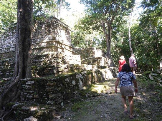 Community Tours Sian Ka'an : Muyil Archaeological site