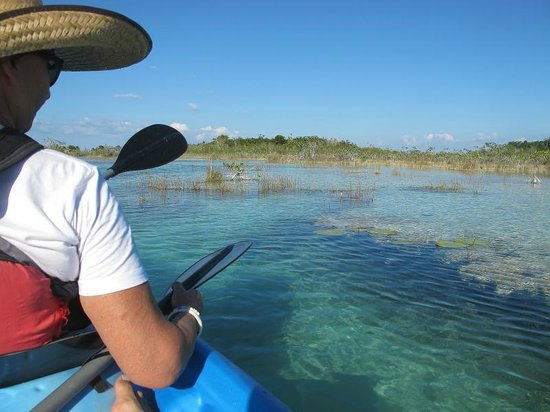Bacalar, México: See the submerged stromatolites from a kayak