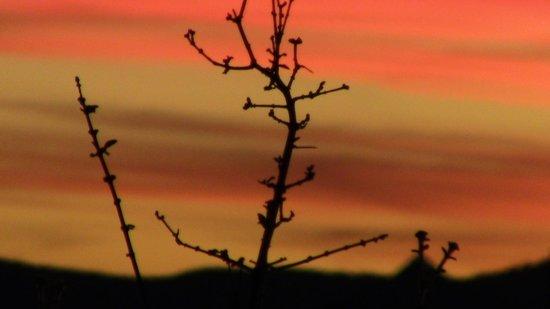 Vingerklip Lodge: tramonto