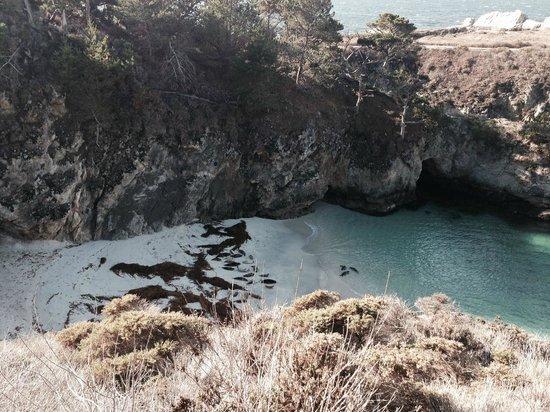 Point Lobos State Reserve: Point Lobos 2