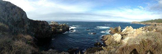 Point Lobos State Reserve: Point Lobos 4
