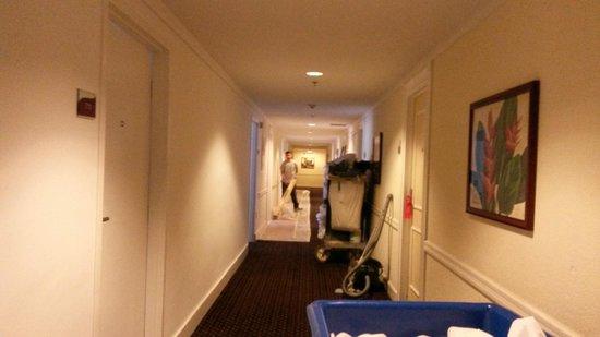 Hotel Riu Plaza Miami Beach : Afuera de la habitacion