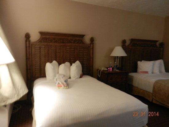 Ramada Sarasota: camas estreitas