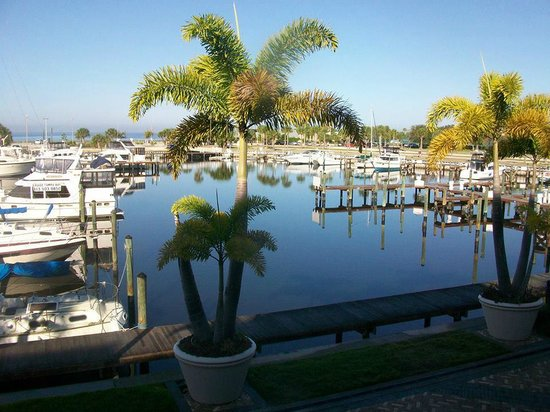 The Resort & Club at Little Harbor: harbor view