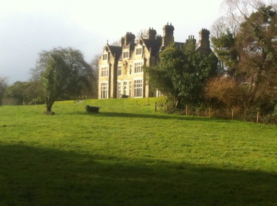 Blessingbourne Apartments: Estate